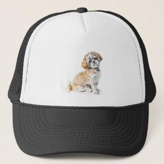 Shih Tzu Dog Hat