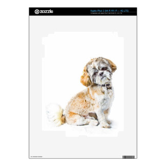 Shih Tzu Dog iPad 3 (Wi-Fi/Wi-Fi + 4G LTE) Skin Skins For iPad 3