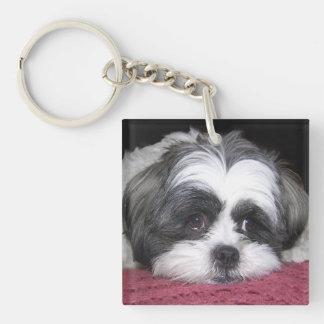 Shih Tzu Dog Keychain