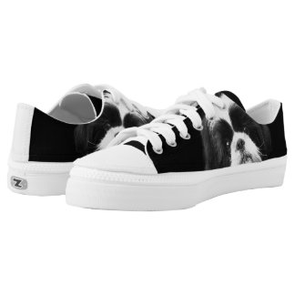 Shih Tzu dog low top tennis shoes