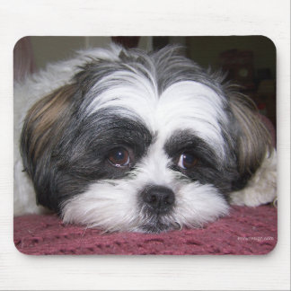 Shih Tzu Dog Mouse Pad