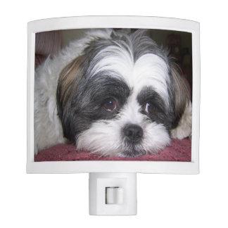Shih Tzu Dog Night Light