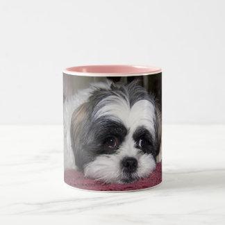 Shih Tzu Dog Photograph Coffee Mug