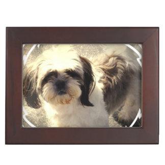 Shih Tzu Dog Memory Box