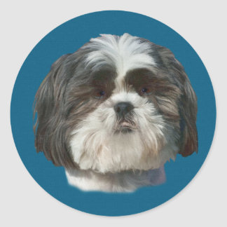 Shih Tzu Dog Sticker