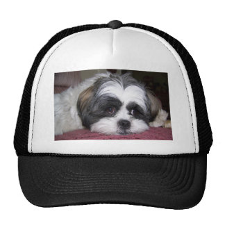 Shih Tzu Dog Trucker Hat