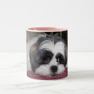 Shih Tzu Dog Two-Tone Coffee Mug