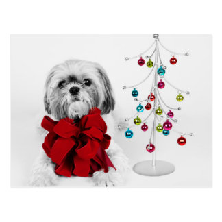 Shih Tzu dog with red bow by toy Christmas tree Postcard