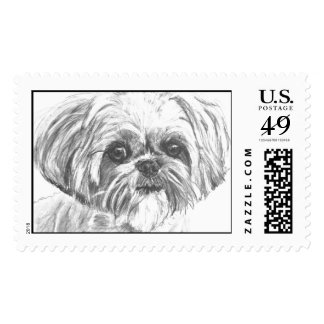 Shih Tzu Drawing Postage