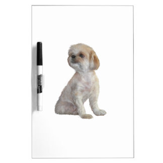 Shih Tzu (hair cut) Dry-Erase Whiteboards