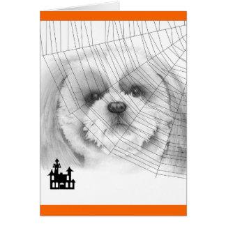 Shih Tzu Halloween Card