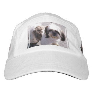 Shih-Tzu Headsweats Hat