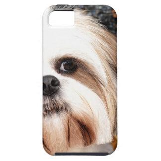 Shih Tzu iPhone SE/5/5s Case