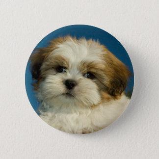 Shih Tzu Pinback Button