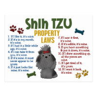 Shih Tzu Property Laws 4 Postcard