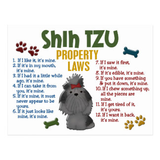 Shih Tzu Property Laws 4 Postcard
