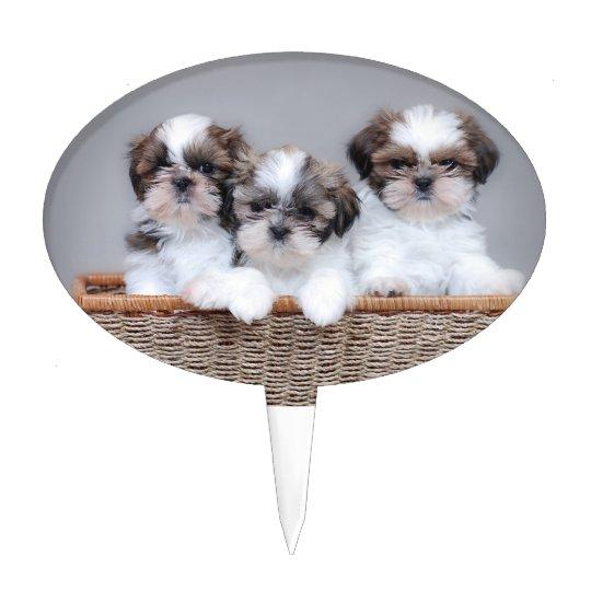 Shih Tzu puppies Cake Topper