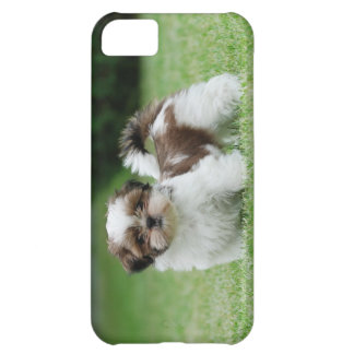 Shih tzu puppy cover for iPhone 5C