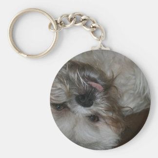 shih tzu puppy dog adorable cute photo keychain