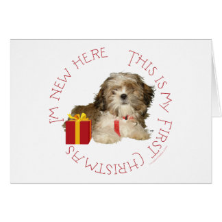 Shih Tzu Puppy First Christmas Cards