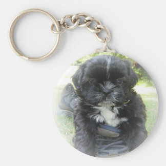 Shih Tzu Puppy Key Chain