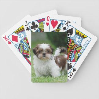 Shih tzu puppy bicycle card deck