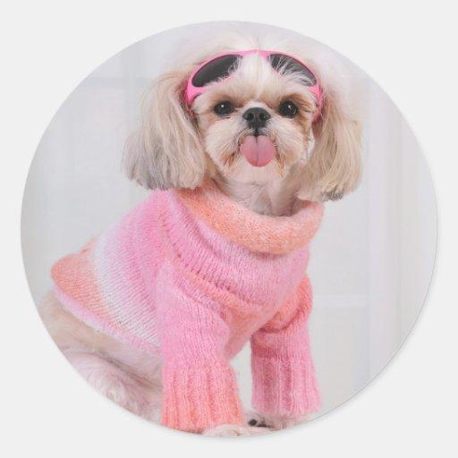 Shih Tzu Puppy - The Razz Round Sticker