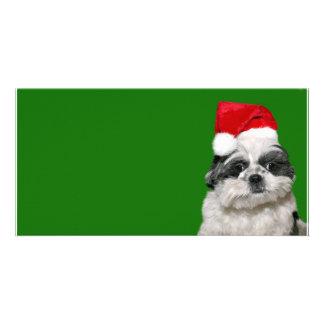 Shih Tzu Santa Card