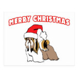 Shih Tzu Santa-Merry Christmas Post Card