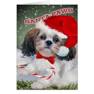Shih Tzu Santa Paws Card