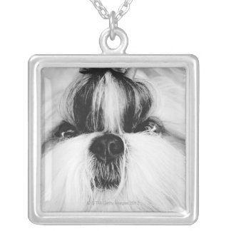Shih Tzu Silver Plated Necklace