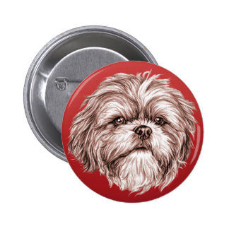 Shih Tzu Sketch Pinback Button