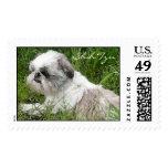 Shih Tzu Stamps