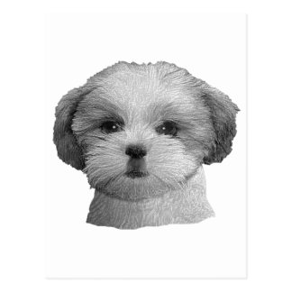 Shih Tzu - Stylized Image - Add Your Qwn Text Postcard
