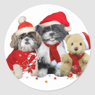 Shih Tzu & Teddy Bear Xmas Card Classic Round Sticker