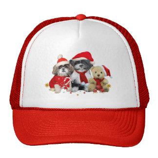 Shih Tzu & Teddy Bear Xmas Card Hat