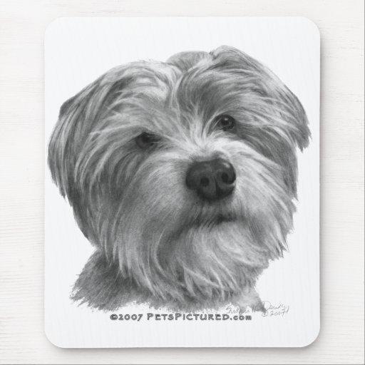 Shih Tzu-Terrier Mix Mouse Pad