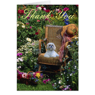 Shih Tzu Thank You Card Garden