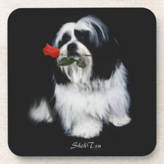 Shih Tzu With Rose Drink Coasters