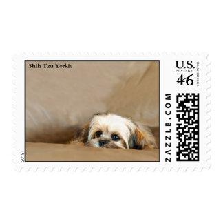 Shih Tzu Yorkie Terrier Stamps