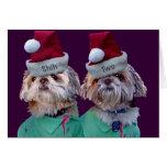 Shih Tzues Shih Two Christmas Greeting Cards