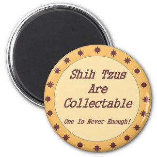 Shih Tzus es cobrable Imán De Frigorífico