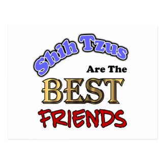 Shih Tzus Make The Best Friends Postcard