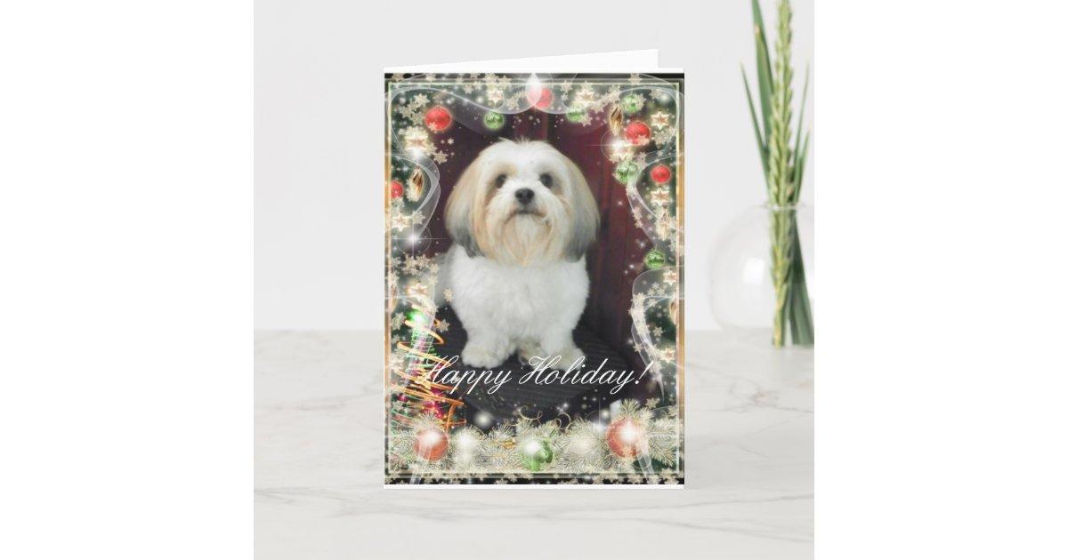 ShihTzu Christmas Card | Zazzle.com