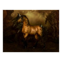 Shikoba buckskin horse Poster