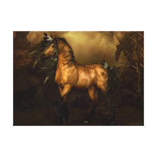 Shikoba Buckskin horse Stretched Canvas Print