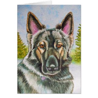 Shiloh Shepherd Card