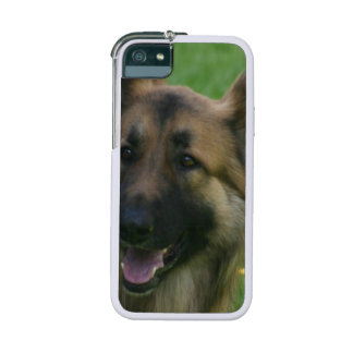 Shiloh Shepherd iPhone 5/5S Case