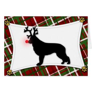 Shiloh Shepherd Reindeer Christmas Card