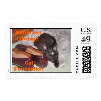 Shiloh the one eyed cat postage stamp